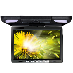 Add Roof Mounted Dvd and blu-ray Gamer as part of your Automotive Via All by yourself